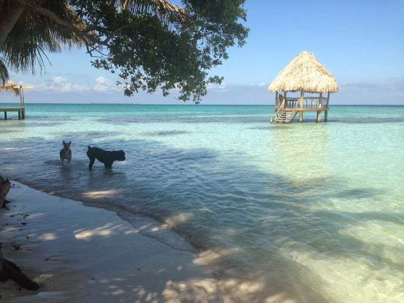 One of the finest Caribbean beaches